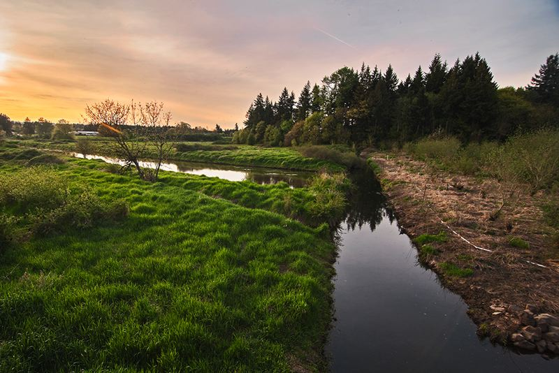 by: SPOKESMAN PHOTO: JOSH KULLA - The Seely Ditch was a mile-and-a-half civil engineering project dug by hand in 1858. It drained what is now the Coffee Creek wetland in north Wilsonville. This view looks northwest.