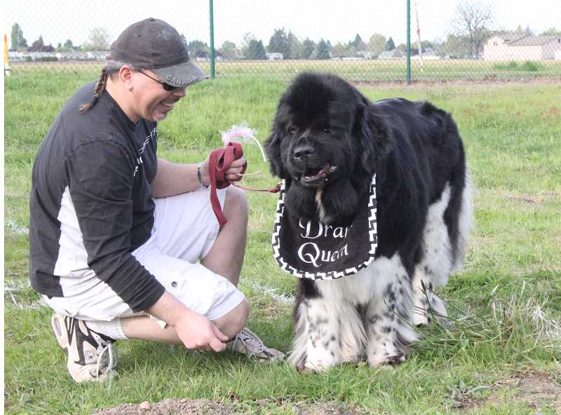 by: LINDSAY KEEFER - Shelby, a Newfoundland dog dressed as a drama queen, enjoys treats alongside her owner during the second annual Doggie Treat Hunt at Centennial Park Friday.