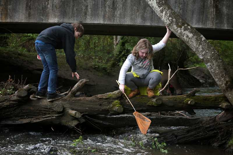 by: TIMES PHOTO: JONATHAN HOUSE - Haley Hanblin reaches down into the waters of Summer Creek, looking for creatures during a Tualatin Riverkeepers-sponsored field trip at Dirksen Nature Park.