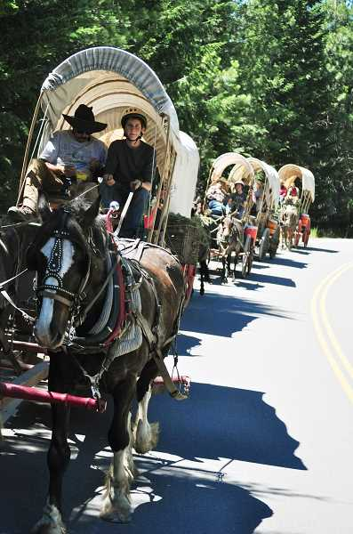 by: COURTESY PHOTO: HEATHER  HARDMAN - Spencer Hardman drove a team of Percherons on the trails last year and will do so again in July -- with a little more experience under his belt.