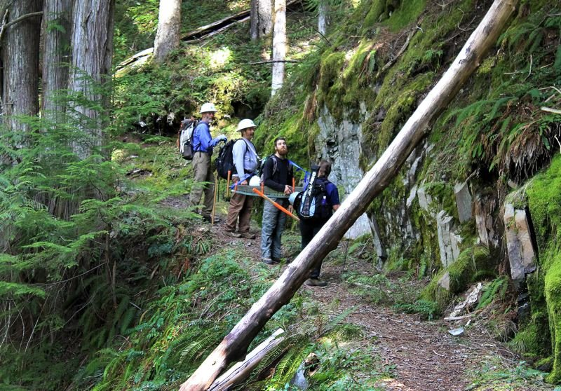 by: OUTLOOK PHOTO: CARI HACHMANN - Volunteer sawyers of the Pacific Crest Trail Associations Mount Hood Chapter analyze a fallen log in a designated wilderness area near Ramona Falls.
