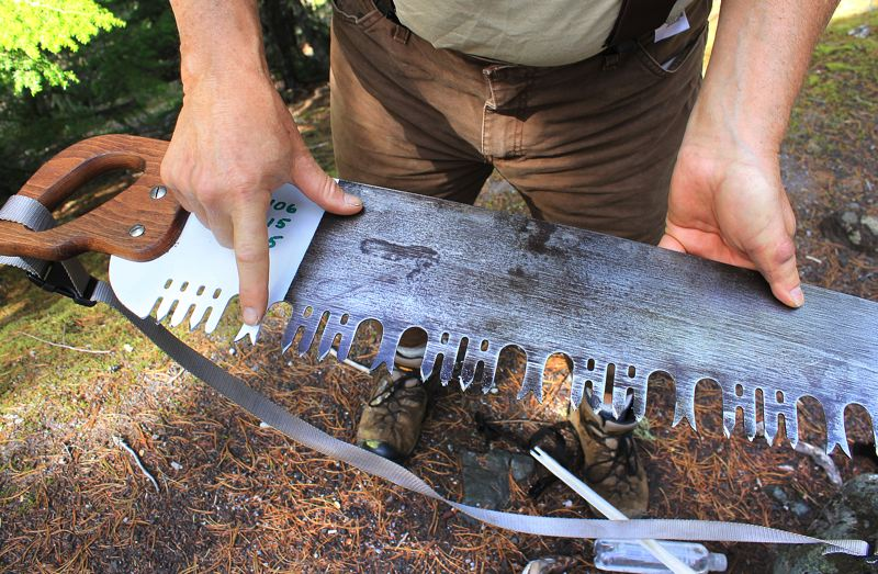 by: OUTLOOK PHOTO: CARI HACHMANN - Bill Hawley, a lead crew member and saw instructor, points to the teeth of a Western-pattern cross-cut saw. Sawyers have used these saws to slice timber for years, and they are antiques.