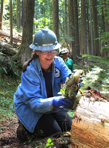 by: OUTLOOK PHOTO: CARI HACHMANN - Roberta Cobb smears dirt on the face of a sliced log to make it blend into the wilderness, an act known as the Roberta finish.