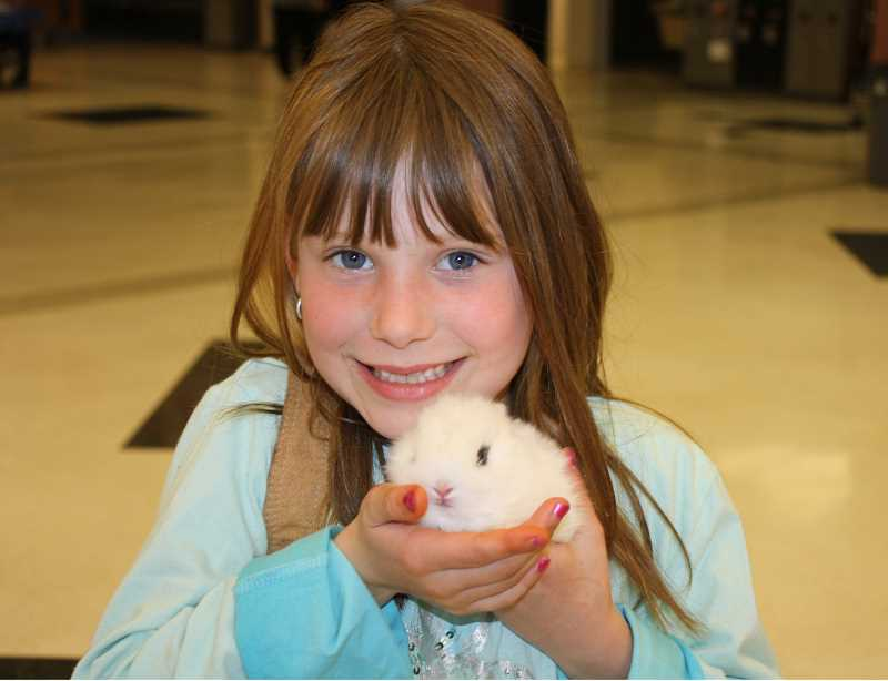 by: PEGGY SAVAGE - Little future FFA member Natalie Urton, 7, shows off the baby bunny she is raising. Amanda had secreted her bunny into the cereomy, tucked away in a little purse she was carrying that evening. She is the little sister of two FFA members, Lauren and Morgan Urton.