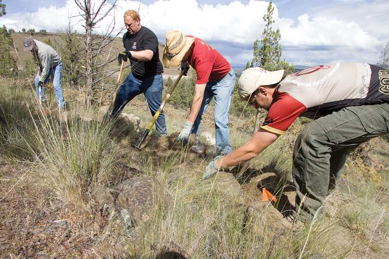 by: KEVIN SPERL  - William Henderson, (right), Stephen Henderson, Seth Crawford, and Paul Cuddy, COTA volunteer trail builders, work to clear part of the new multi-use trail along the Lower 66 acreage of the Ochoco State Scenic View Point State Park.
