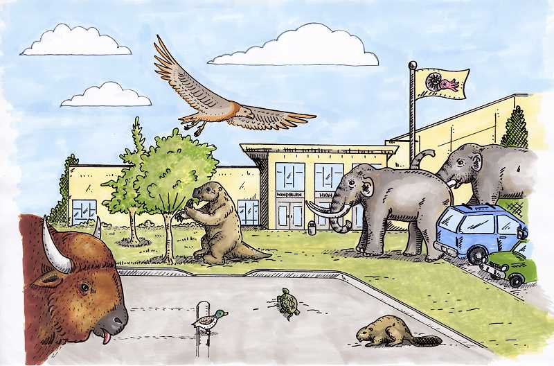 by: PHOTO COURTESY OF THE UNIVERSITY OF OREGON MUSEUM OF NATURAL AND CULTURAL HISTORY - Part of the new 'Explore Oregon' exhibit, this artist's rendering shows some of the megafauna whose remains have been found in the Woodburn area, depicted in front of Woodburn High School.