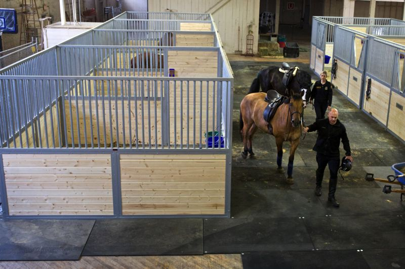 by: TRIBUNE PHOTO JAIME VALDEZ - Rob Bender and Cassandra Wells who is are officers with the Portland Police Bureaus Mounted Patrol Unit Officer, walk their horses, Olin and Murphy, out of the new stalls at Centennial Mills.