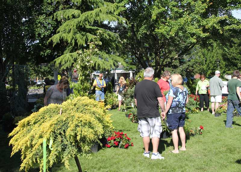 by: SUBMITTED PHOTO - Choose from a variety of flowers, shrubs and trees at the annual plant sale and silent auction Saturday. The Boy Scout fundraiser is supported by donations from local merchants and nurseries.