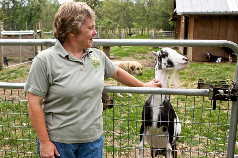 by: PAMPLIN MEDIA GROUP PHOTO: JAIME VALDEZ  - Carol Westergreen, who co-owns Out in the Garden Nursery in Molalla, says hello to her goat, Gypsy.