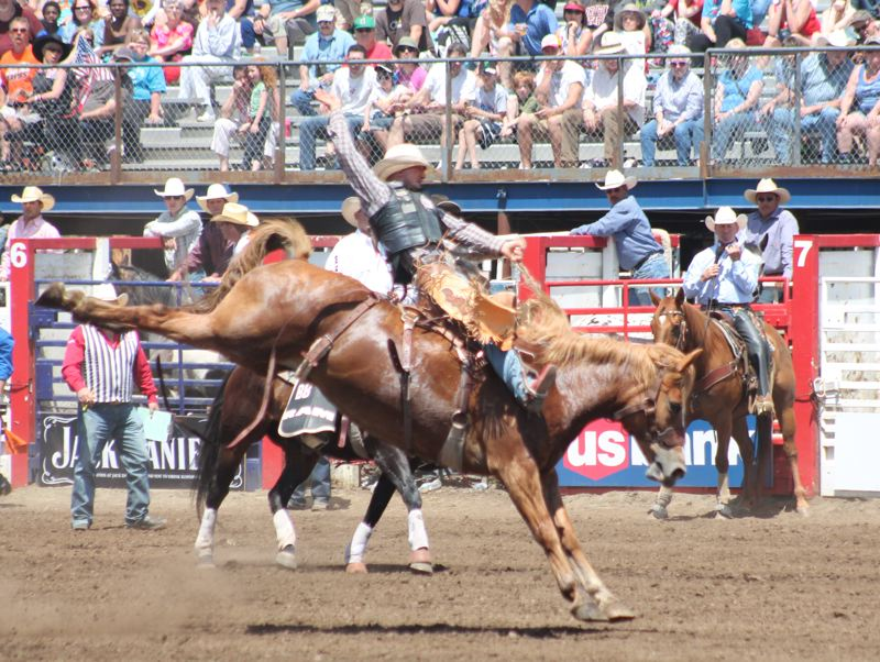 by: JIM BESEDA/MOLALLA PIONEER - John Redig of Casper, Wyo., went for a 78-point ride aboard Big Bend Rodeo's Faded Winds in the saddle bronc competition during Friday afternoon's first of two Independence Day performances at the 91st Molalla Buckeroo PRCA Rodeo.