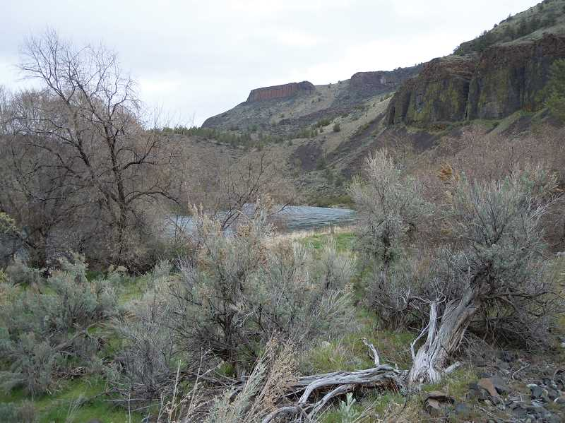 by: SCOTT STAATS PHOTO - Trout Creek Trail leads to some impressive canyon views.