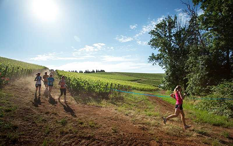 by: SUBMITTED - Exploring the country - Rated as a 'must-do' race, the Fueled by Fine Wine half-marathon takes participants through miles of Dundee hills and vineyards.