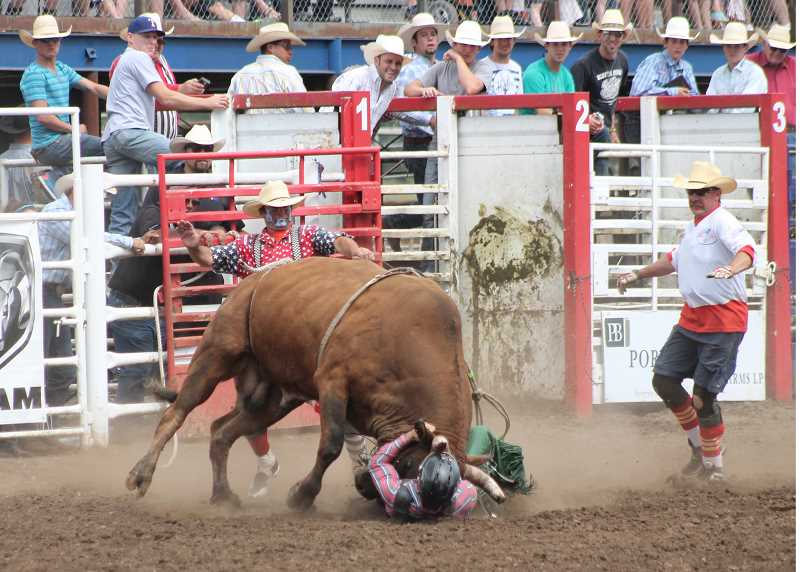 by: JIM BESEDA/MOLALLA PIONEER - Bullrider Jeff Askey of Martin, Tenn., gets punished by Flying 5 Rodeo's No. 958 during last week's 91st Molalla Buckeroo PRCA Rodeo. Martin sustained only minor injuries, while his 66-point ride fell short of winning any prize money.