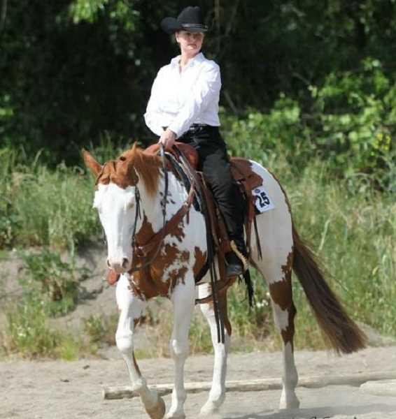 by: PHOTO CONTRIBUTED BY STACY JO HARTLEY - Horse show competitors will compete in a variety of different classes and divisions during the three-day event.