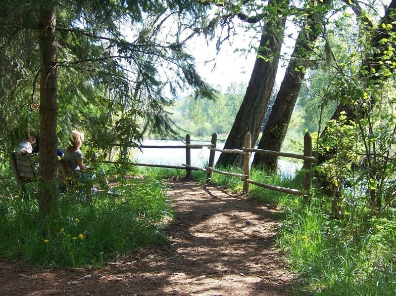 by: COURTESY OREGON DEPARTMENT OF FORESTRY  -  n Lane County, Mount Pisgah Arboretum offers vistas of Oregon white oak, riverside trails and a water garden where you can often spot Western Pond turtles.