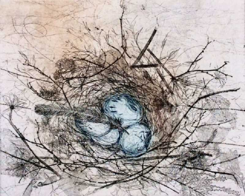 by: SUBMITTED PHOTOS - Jani Hobergs etching Nest and Eggs will be on display in Lakewood Centers foyer gallery.