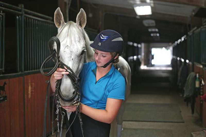 by: TIMES PHOTO: JONATHAN HOUSE - Questt is harnessed prior to the start of dressage practice.