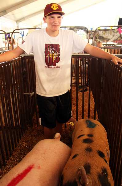 Photo Credit: NEWS-TIMES PHOTO: STEPHANIE HAUGEN - Derek Heisler, a sophomore at Forest Grove High School, fetched about $1,000 for his pig Stanley.