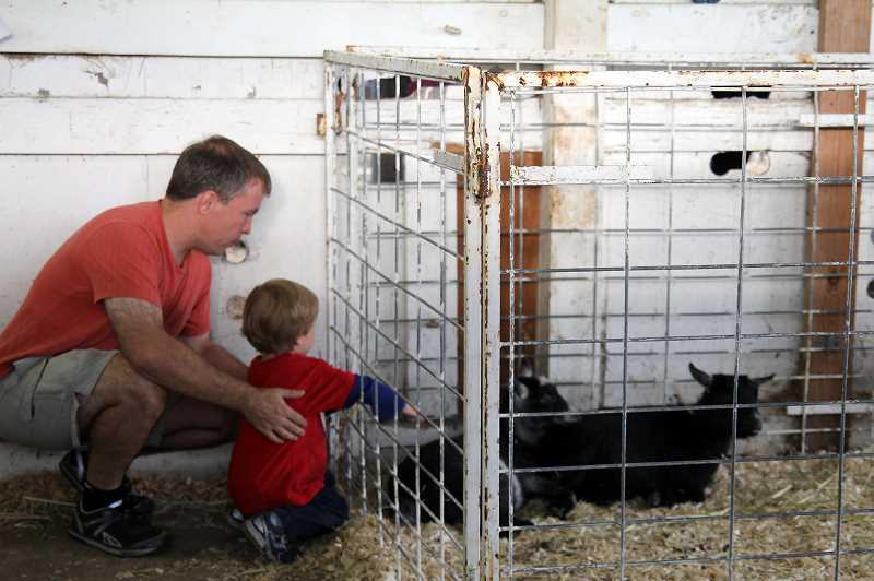 Photo Credit: NEWS-TIMES PHOTO: STEPHANIE HAUGEN - Both parents and youngins packed the livestock barns.