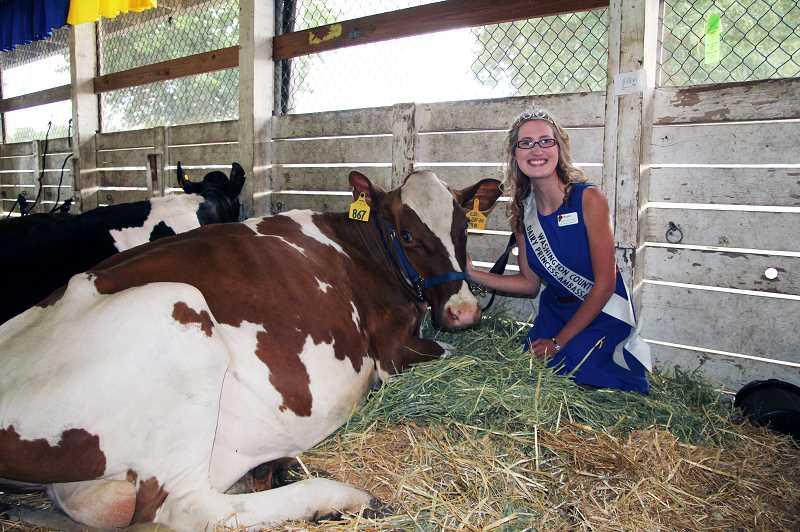 Photo Credit: NEWS-TIMES PHOTO: STEPHANIE HAUGEN - Megan Sprute, Washington County Dairy Princess-Ambassador, took a break from handing out Got Milk? stickers to visit with her dairy cow.