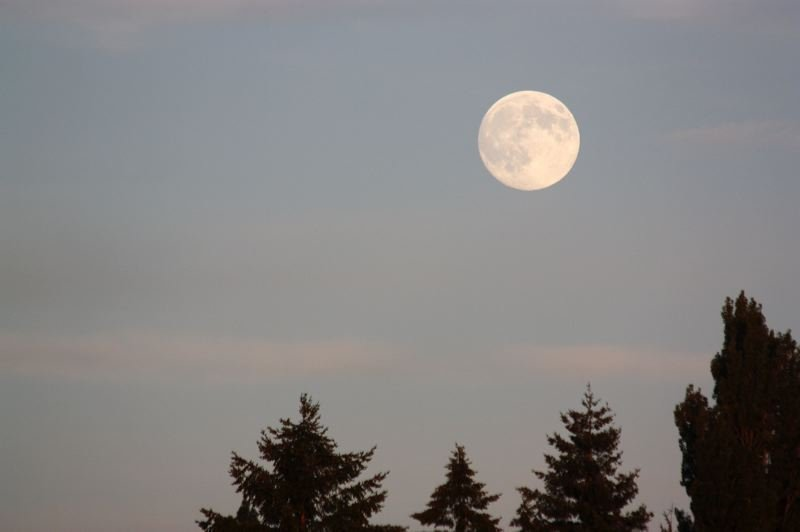 Photo Credit: HILLSBORO TRIBUNE PHOTO: DOUG BURKHARDT - The weekends full moon was billed as the biggest and closest full moon of 2014, and in Washington County, we luckily had clear skies so we could see it in its full, beaming magnificence.