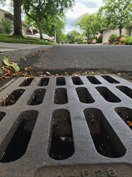 Photo Credit: SPOKESMAN PHOTO: JOSH KULLA - Aging Charbonneau stormwater mains largely consist of corrugated piping below grates like these. Those pipes have badly corroded in spots, resulting in the need for tens of millions of dollars in repairs in coming years. That will now be addressed by the Charbonneau Consolidated Improvement Plan, approved Aug. 4 by the Wilsonville City Council.