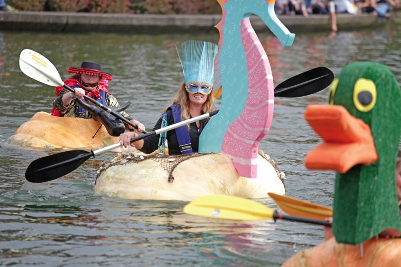 Photo Credit: TIMES PHOTO: JONATHAN HOUSE  - Charity Marshall paddles in her seahorse pumpkin during the 11th annual West Coast Giant Pumpkin Regatta on Saturday.