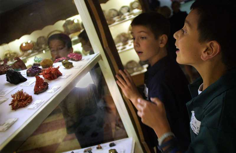 PAMPLIN MEDIA GROUP PHOTOS: DAVID PLECHL - The Rice Museums extensive collection of various rocks and minerals is considered world-class. Here, fourth-graders peer into cases with petrified wood and ancient pine cones that have become glass-like over millions of years.