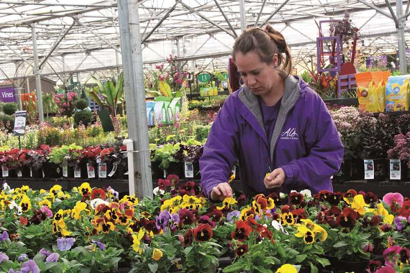 independent photo tyler francke annie mokry tends to a table of live flowers at - Als Garden