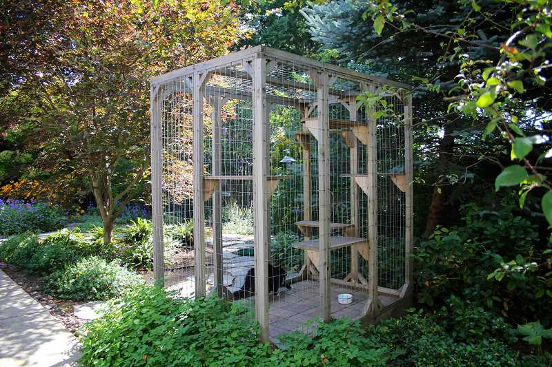 CONNECTION PHOTO: KELSEY O'HALLORAN - Over the past five years, Jim and Joei Lattzs modular catio has weathered to blend in with the plants and trees in their backyard.
