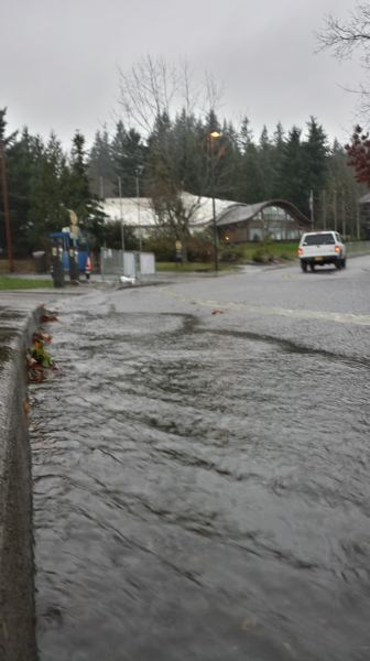 TRIBUNE PHOTO: JOSEPH GALLIVAN - Water flows across part of the parking area at the Oregon Zoo Monday morning.