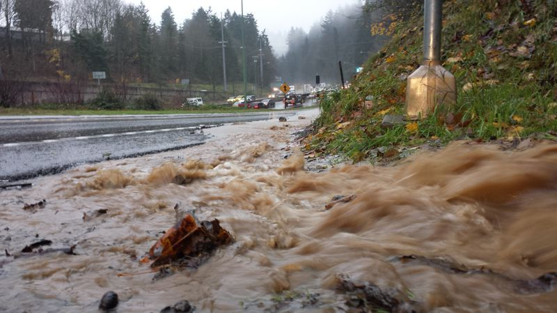 TRIBUNE PHOTO: JOSEPH GALLIVAN - Muddy water flows off the hillside near Southwest Knights Boulevard Monday morning, Dec. 7. Monday's heavy rain is causing flooding on streets around Portland.