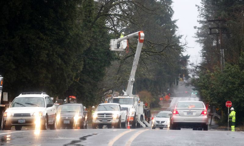 TRIBUNE PHOTO: JONATHAN HOUSE - Crews work to cut away branches that fell on a powerline near Johnson Creek Boulevard.