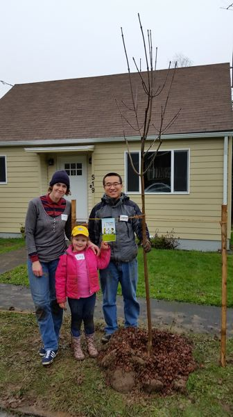 PHOTO BY: JUSTIN SEIBERG - Emily O'Gara and her daughter Lucy stand with their neighbor Baofeng Dong in front of an autumn purple ash tree they just planted in the Barclay Hills Neighborhood, during the Friends of Trees planting event on Dec. 5 in Oregon City.