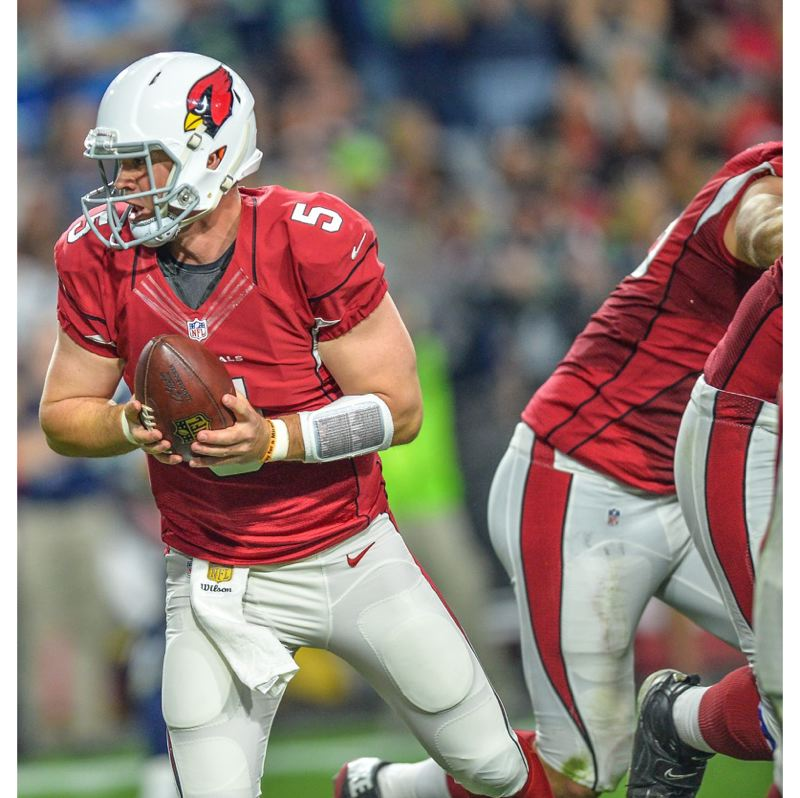 Drew Stanton drops back to pass for the Cardinals.