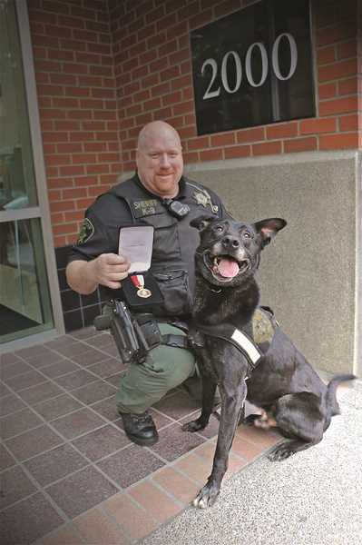 COURTESY PHOTO: MCSO - Marion County Sheriff's Office K-9, Yo, who died recently, is pictured here with Senior Deputy Jerry Wollenschlaeger after receiving the lifesaving award for his role in a 2014 rescue of a suicidal woman.