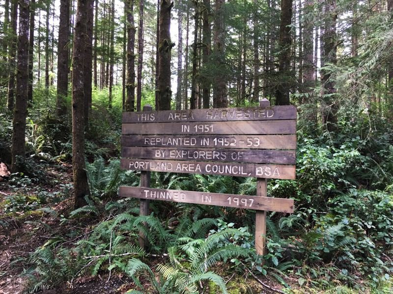 PAMPLIN MEDIA GROUP: ALVARO FONTAN - Sign on Boy Scouts oceanfront property south of Cape Lookout reminds scouters that their peers replanted the forest about 64 years ago.