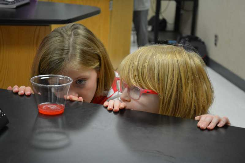 HILLSBORO TRIBUNE PHOTO: KATHY FULLER - Grace Garrison and Isabella Sarlo watch intently as DNA begins to separate from the juice of a strawberry.
