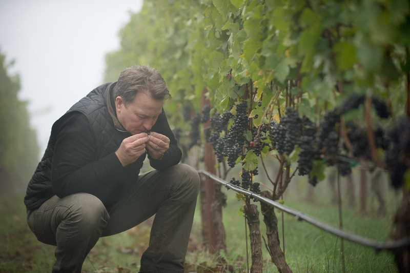 Joe Dobbes believes the quality of the wine starts in the vineyard.