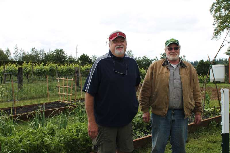REVIEW PHOTO: ANTHONY MACUK - Rick Cook and Steve Cook pose near the farms grape gardens, which were added in the 1990s.