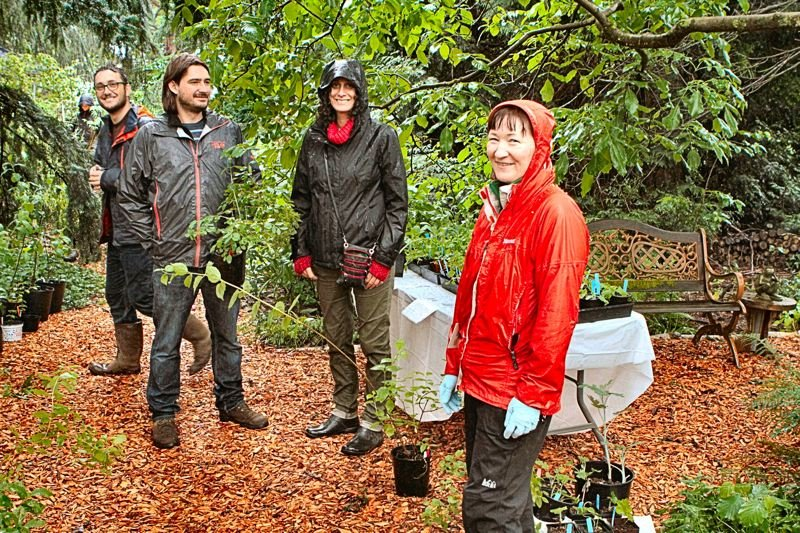 DAVID F. ASHTON - Even in the rain, people came to shop at the Ardenwald/Johnson Creek Neighborhood plant sale, held in the yard of Balfour Park Committee Chair Lisa Gunion-Rinker (at right, in raincoat).