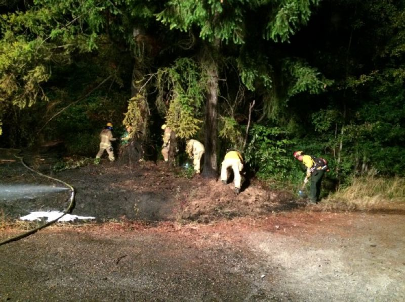 PHOTO COURTESY OF COLUMBIA RIVER FIRE AND RESCUE - Columbia River Fire and Rescue crews spent an hour and a half on scene in Rainier on Friday, Aug. 26, putting out a brush fire caused by a rollover car crash. The man driving the vehicle fled the scene, but was later arrested by Columbia County Sheriff's Office deputies.