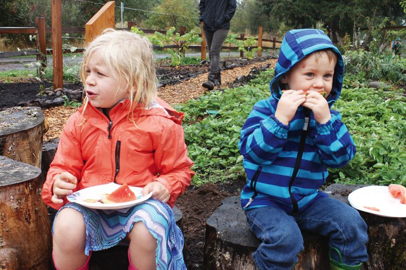 PORTLAND TRIBUNE: LYNDSEY HEWITT - Children enjoyed food and activities at the orchard grand opening on Saturday despite the rain. Organizers say the community space will offer educational opportunities for all ages.