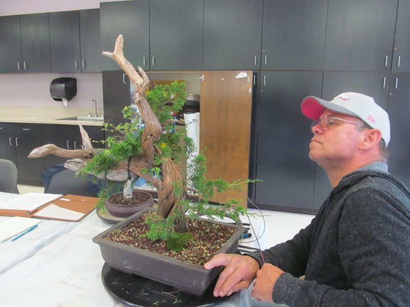 Bonsai Society of Portland's third annual Fall Exhibit at the Milwaukie Center
