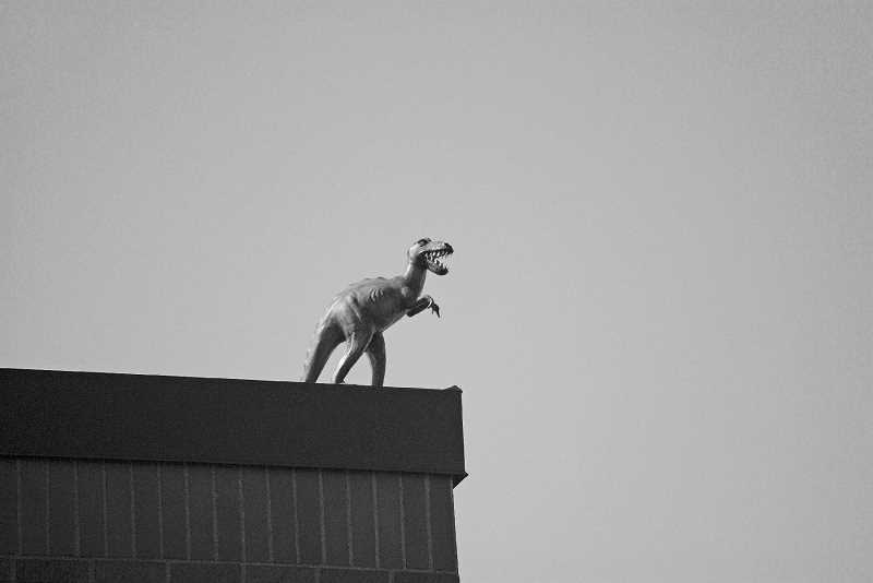NEWS-TIMES PHOTO: STEPHANIE HAUGEN - This dinosaur appeared on a popular Main Street office building over the summer.