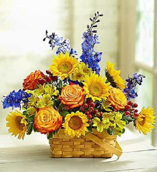 Our Blooming Basket Arrangement is perfect for autumn