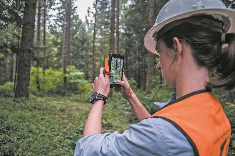 New technology makes carbon assessments cheaper than they once were so conservation organizations can offer more of them free of charge.