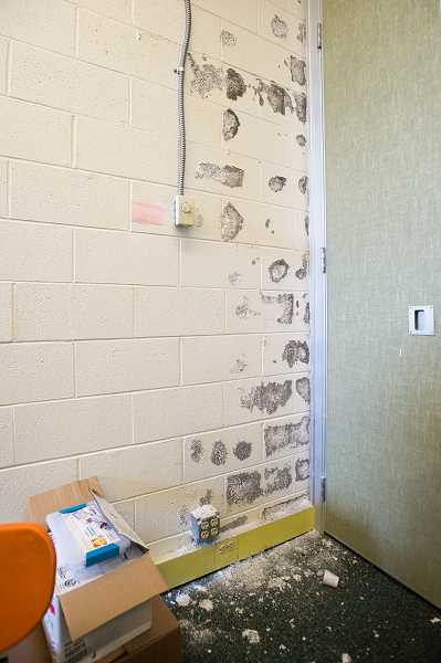 NEWS PHOTO: JOSH KULLA - Popping mold infests the walls of this Estacada High School classroom. This and several other classrooms have been placed off limits for normal use and are instead used for storage of old textbooks, desks and other materials.