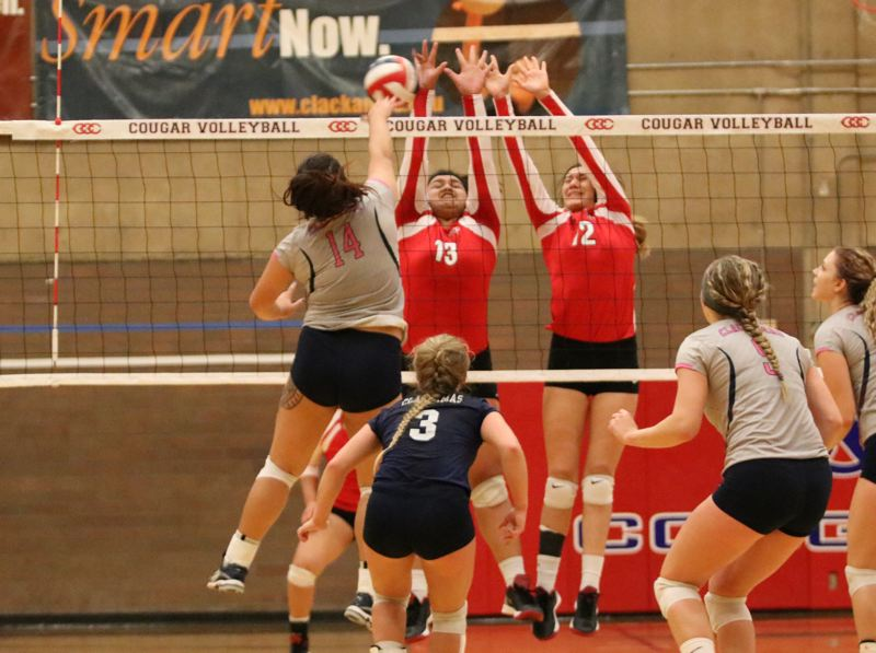 NWAC volleyball: Cougars down rival Mt. Hood in four