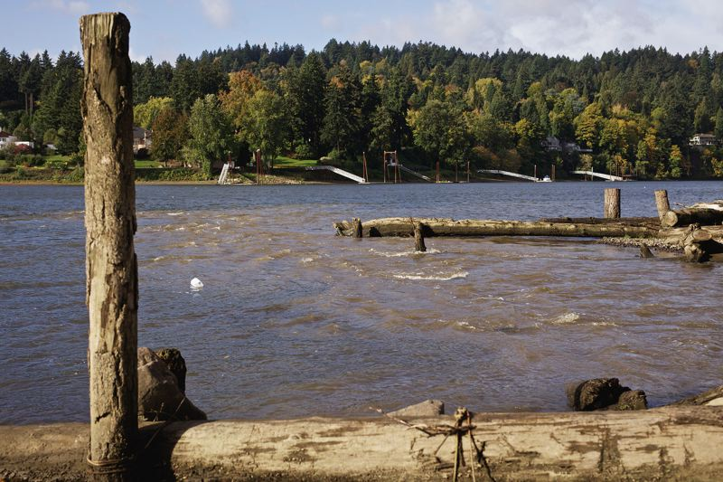 TRIBUNE PHOTO: JAIME VALDEZ - Muddy water from Johnson Creek flows into the Willamette River in Milwaukie.